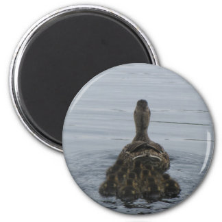 MaMa Duck with Babies 2 Inch Round Magnet