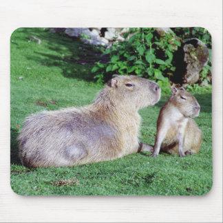 Mamá e hijo Mousepad del Capybara Tapetes De Ratones