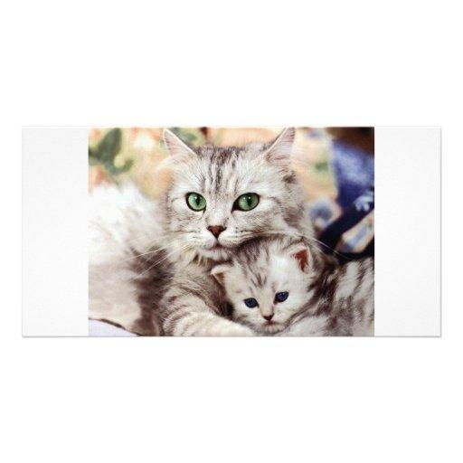 Mamá e hijo tarjetas fotográficas