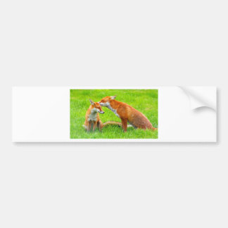 Mama Fox Cares For Her Baby Bumper Sticker