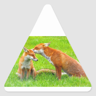 Mama Fox Cares For Her Baby Triangle Sticker