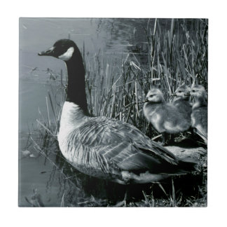 Mama Goose and Baby Geese Ceramic Tile