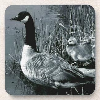 Mamá Goose y gansos del bebé Posavaso