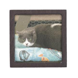 Mama Grey Gift Box
