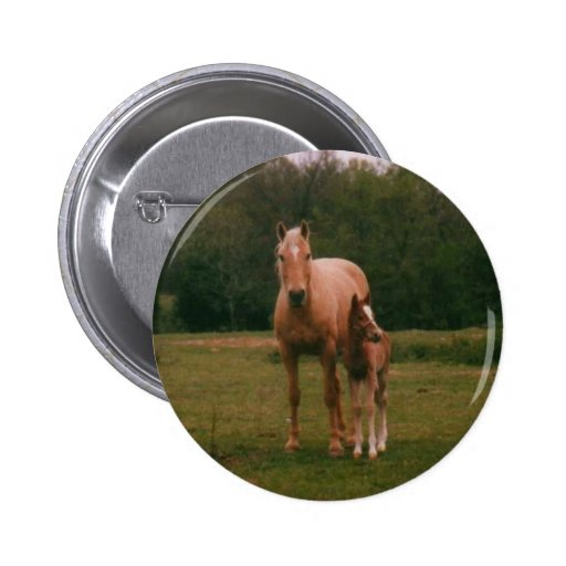 Mama horse and baby horse 2 inch round button