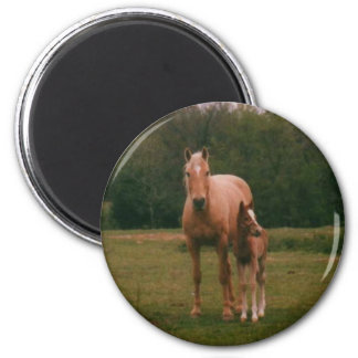 Mama horse and baby horse 2 inch round magnet
