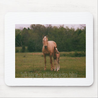 Mama horse and baby horse mouse pad