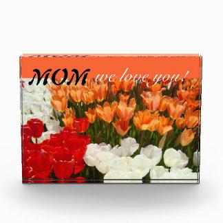 ¡Mamá le amamos! El tulipán florece a la madre de