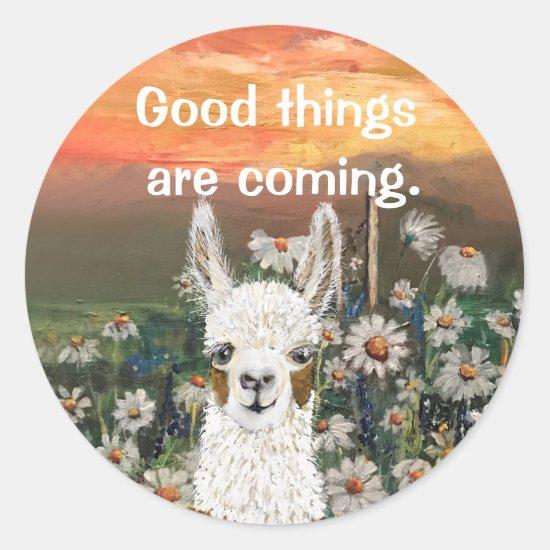 Mama Llama With Beautiful  Daisy Field Background Classic Round Sticker