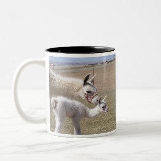 Mamá Llama y taza de Cria