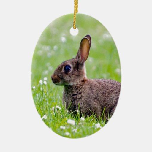 mamá que espera y amor del conejo para adorno navideño ovalado de cerámica