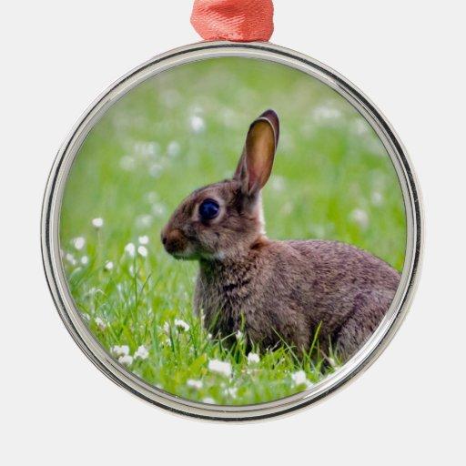 mamá que espera y amor del conejo para adorno navideño redondo de metal