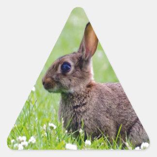 mamá que espera y amor del conejo para calcomanías de trianguladas