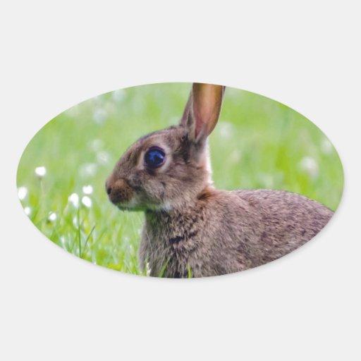mamá que espera y amor del conejo para pegatina ovalada