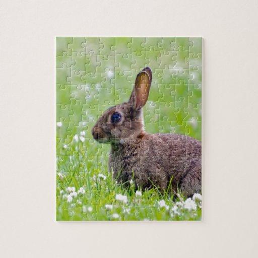 mamá que espera y amor del conejo para rompecabezas con fotos