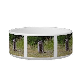 Mama Raccoon Bowl