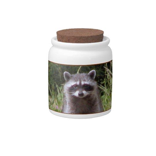 Mama Raccoon Candy Jar