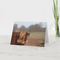 Mama Red Note Card — Missing You