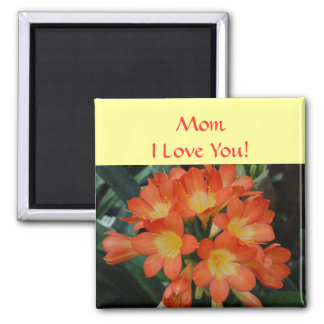 ¡Mamá - te amo! - imán