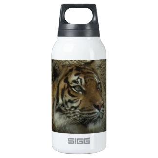 Mamá Tiger