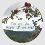 ¡Mamá, usted es Apple de mi ojo! Pegatinas Redondas