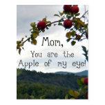¡Mamá, usted es Apple de mi ojo! Tarjeta Postal