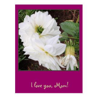 ¡Mamá! Usted es como las flores Tarjeta Postal