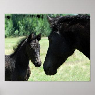 Mamá y bebé del amor del caballo póster