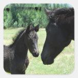 Mamá y bebé del amor del caballo calcomania cuadradas personalizada