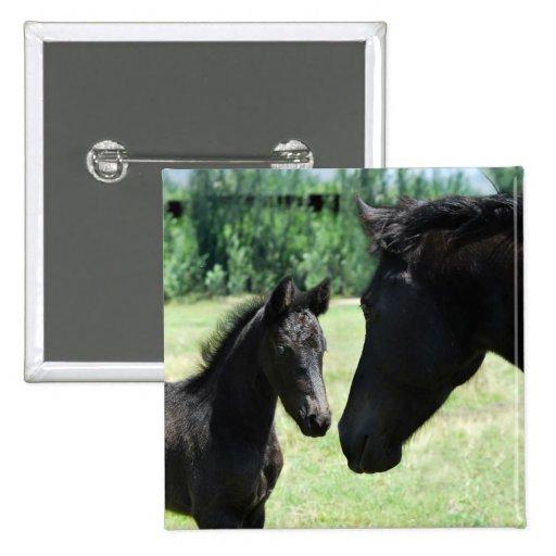 Mamá y bebé del amor del caballo pins
