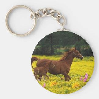 mamá y bebé del caballo llavero redondo tipo pin