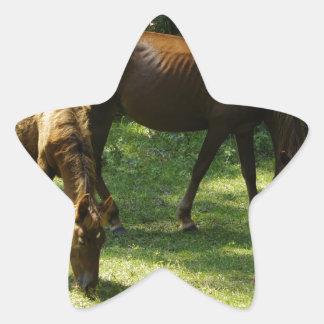 Mamá y bebé pegatinas forma de estrellaes personalizadas