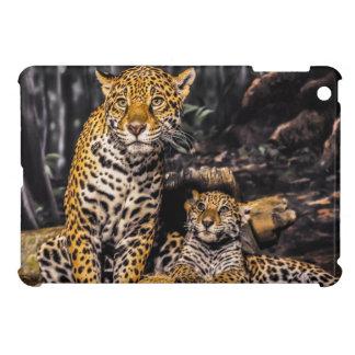 Mamá y Cub de Jaguar
