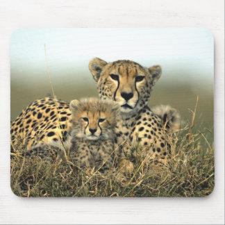 Mamá y Cub Mousepad del guepardo