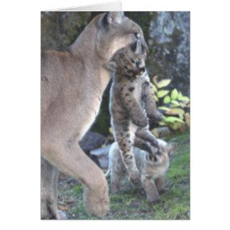 Mamá y Cubs del puma Tarjeta De Felicitación
