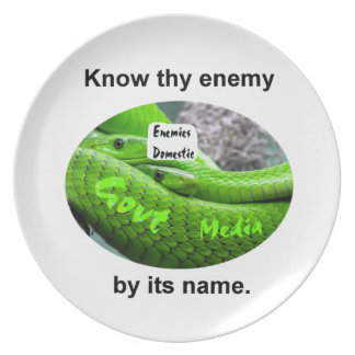 Mamba Snake - Know Thy Enemy By Its Name Dinner Plate