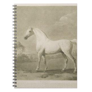 Mambrino, después de George Stubbs, 1788 (mezzotin Notebook