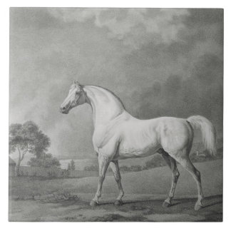 Mambrino, engraved by George Townley Stubbs (1756- Large Square Tile