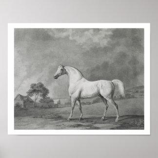 Mambrino, grabado por George Townley Stubbs (1756- Impresiones