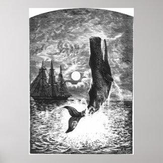 Mamífero de la vida marina del vintage, violación póster