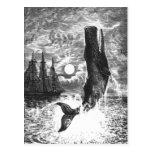 Mamífero de la vida marina del vintage, violación  tarjeta postal
