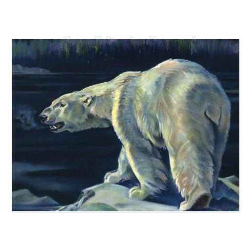 Mamífero marino del vintage, oso polar, ártico del postal