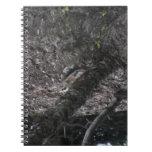 Mamíferos de la fauna de Idaho del barranco de los Libros De Apuntes Con Espiral