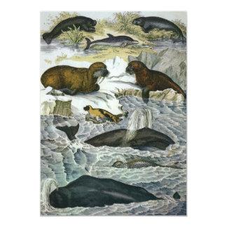 Mamíferos marinos del vintage; Ballenas, morsas y Invitación 12,7 X 17,8 Cm