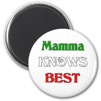 Mamma Knows Best Magnet
