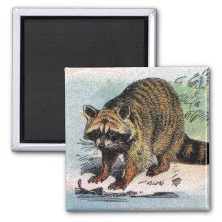 Mammals:  five small illustrations fridge magnet