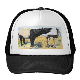 Mammals:  tapir & gazelle trucker hat