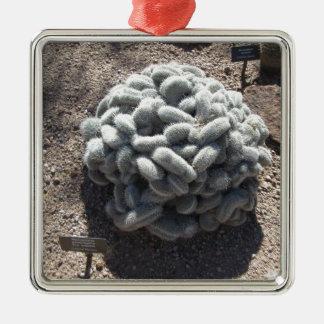 Mammillaria Cactus Metal Ornament