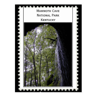 Mammoth Cave Kentucky Postcard