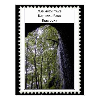Mammoth Cave Kentucky Postcard